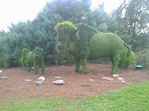 What's Your Favorite Disney Topiary