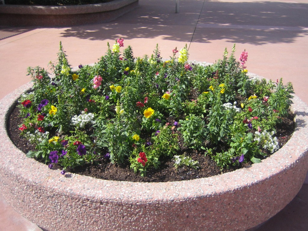 Entry Planters