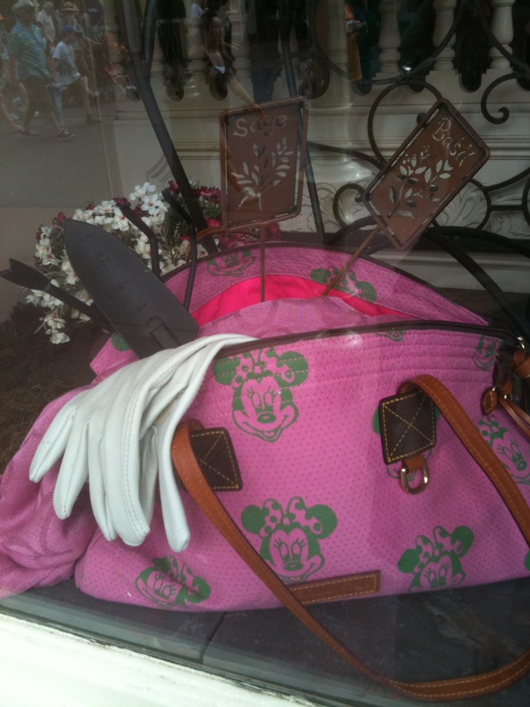 Wordless Wednesday – Interesting Use of a Disney Dooney and Bourke Bag