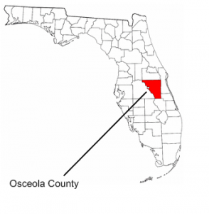 #4 My Mother-in-law's Mother was a Bronson from Osceola County