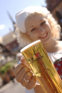 Epcot Food and Wine Festival Beer