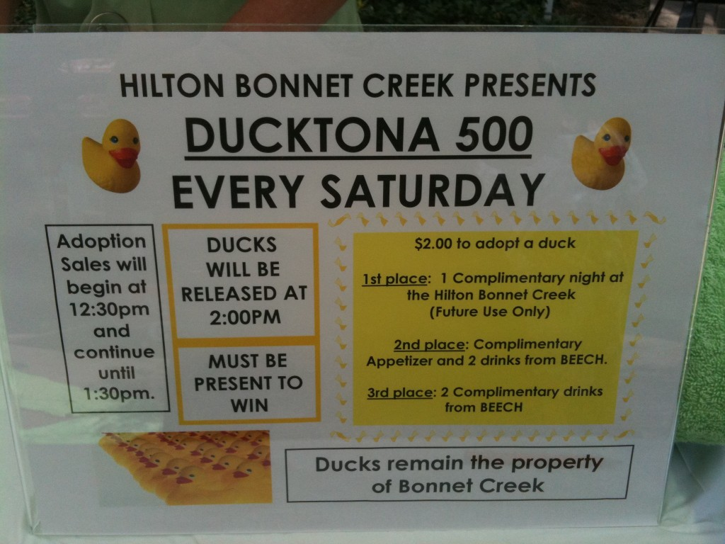 Hilton Bonnet Creek Orlando pool ducktona 500