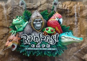 Can You Use A Disney Gift Card For Rainforest Cafe