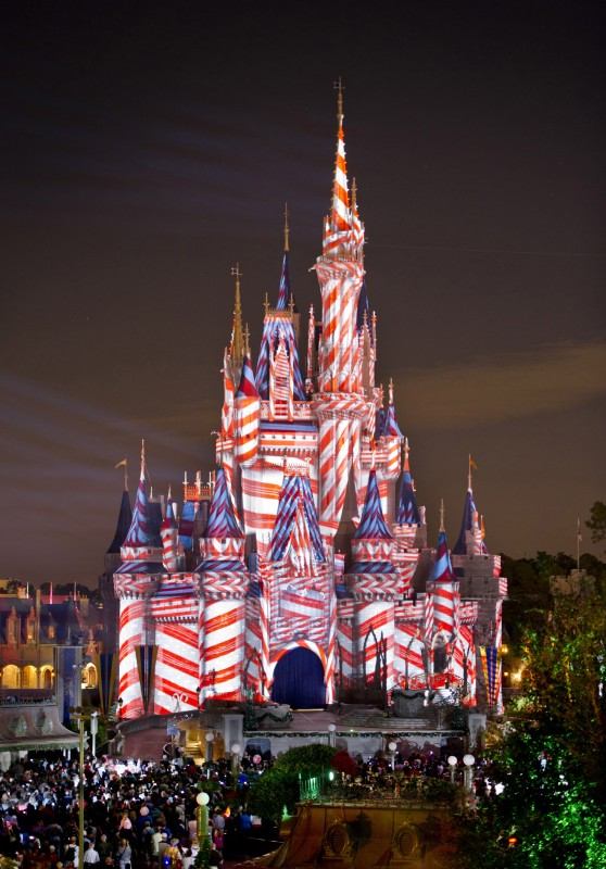 Cinderella Castle Christmas.The Grinch Couldn T Steal This Much Christmas With His