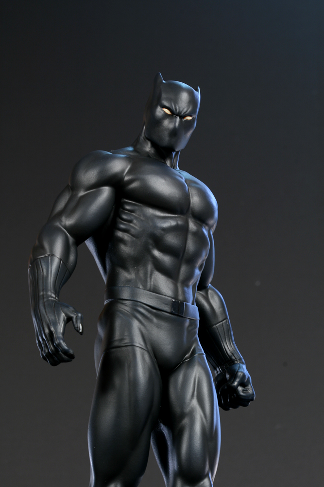 Disney Rumored To Give Marvel Character The Black Panther Interiors Inside Ideas Interiors design about Everything [magnanprojects.com]