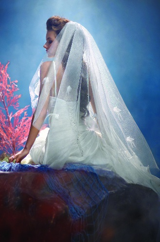 Eight Disney Fairy Tale Wedding Veils Named After Princesses by Alfred Angelo