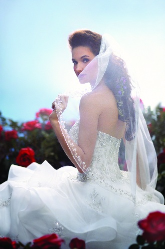 Alfred Angelo Disney Wedding Dresses Prices