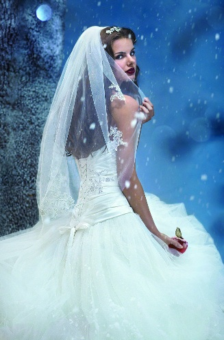 Disney Alfred Angelo Veil Snow White