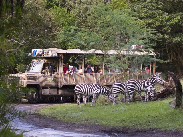 Kilimanjaro Safaris at Disney's Animal Kingdom Gets New Final Scene