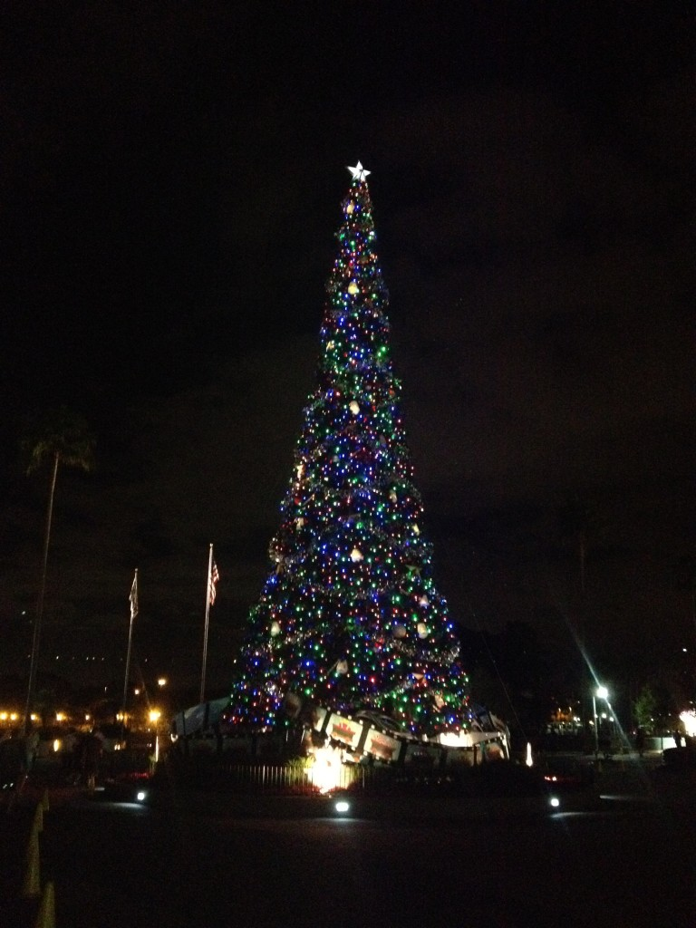 DHS DIsney christmas Tree