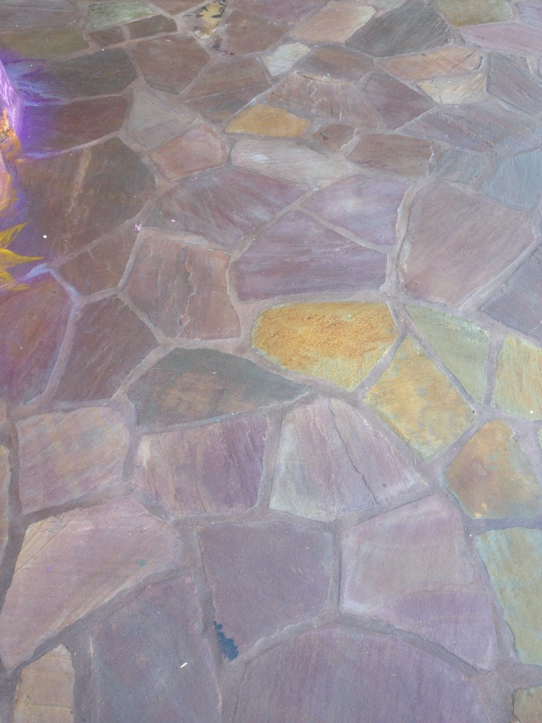 Tangled Bathroom Disney Magic Kingdom New Fantasyland floor