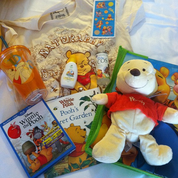 2013 Disney Social Media Moms Celebration Winnie the Pooh Swag