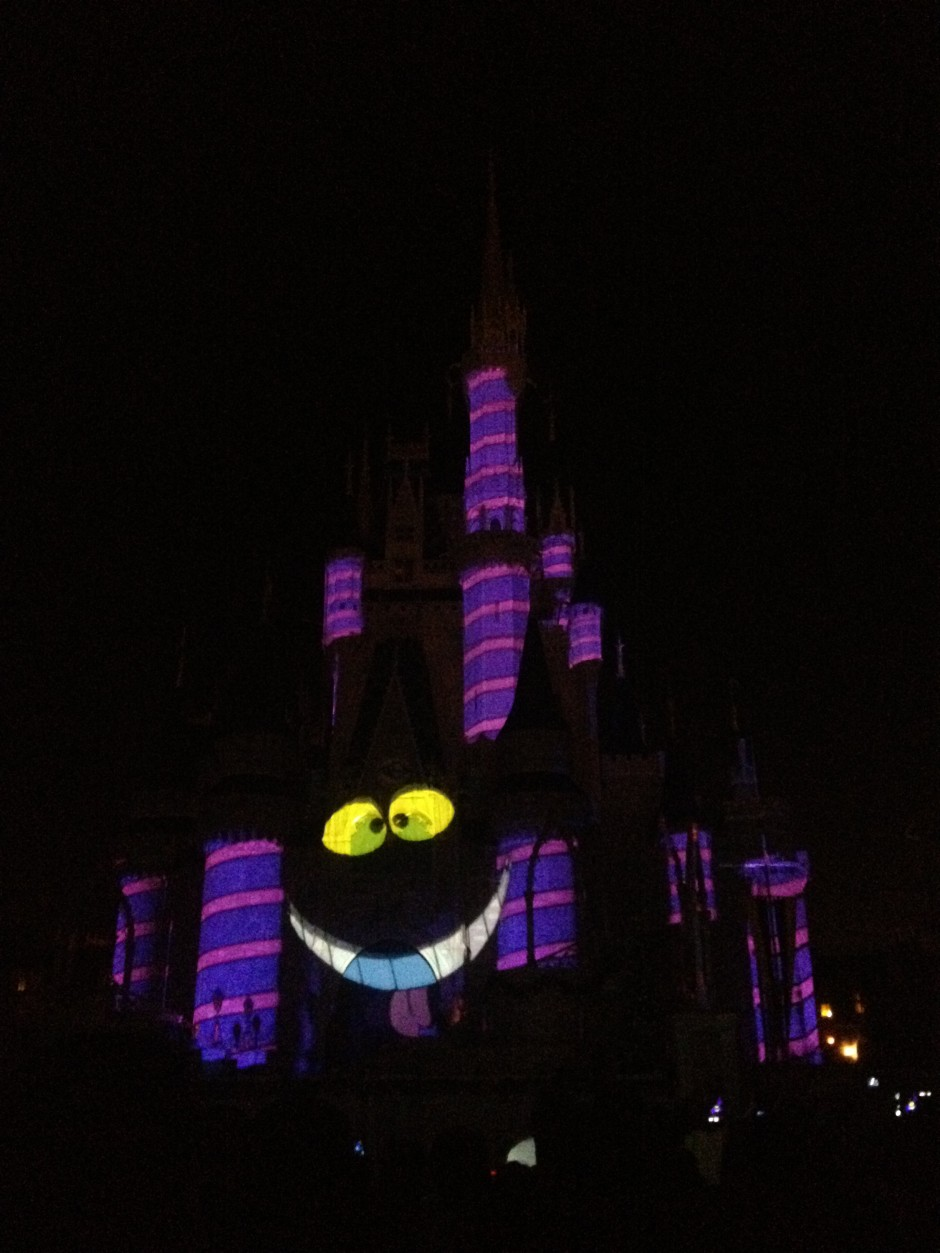 disney magic kingdom cinderella castle celebrate the magic cheshire cat