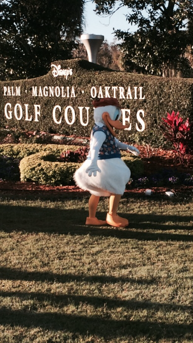 2014 runDisney walt disney world marathon golf donald duck