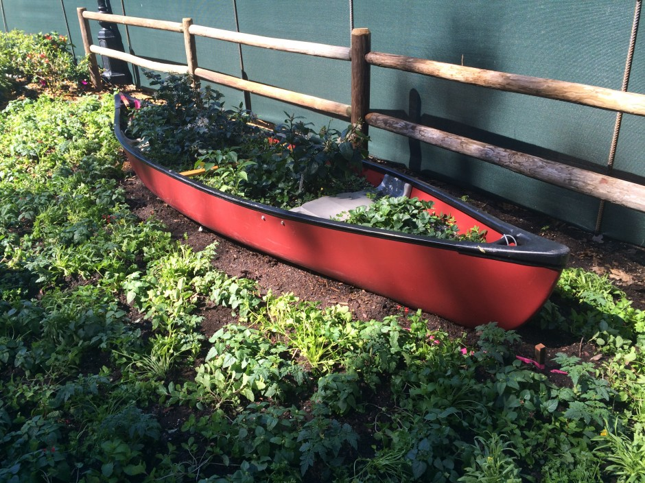 2014 epcot flower and garden festival florida fresh canoe planter