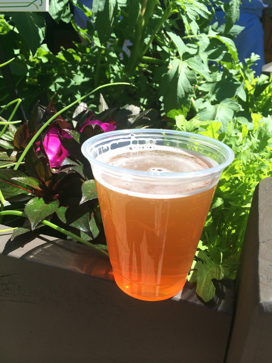2014 epcot international flower and garden festival outdoor kitchen florida fresh beer