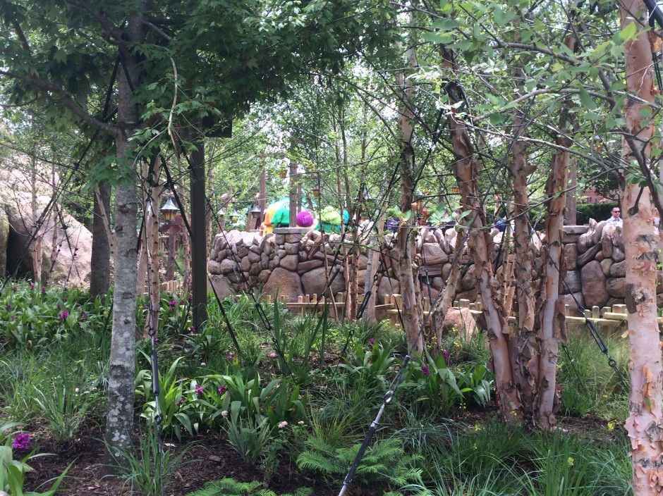 disney magic kingdom seven dwarfs mine train fastpass queue