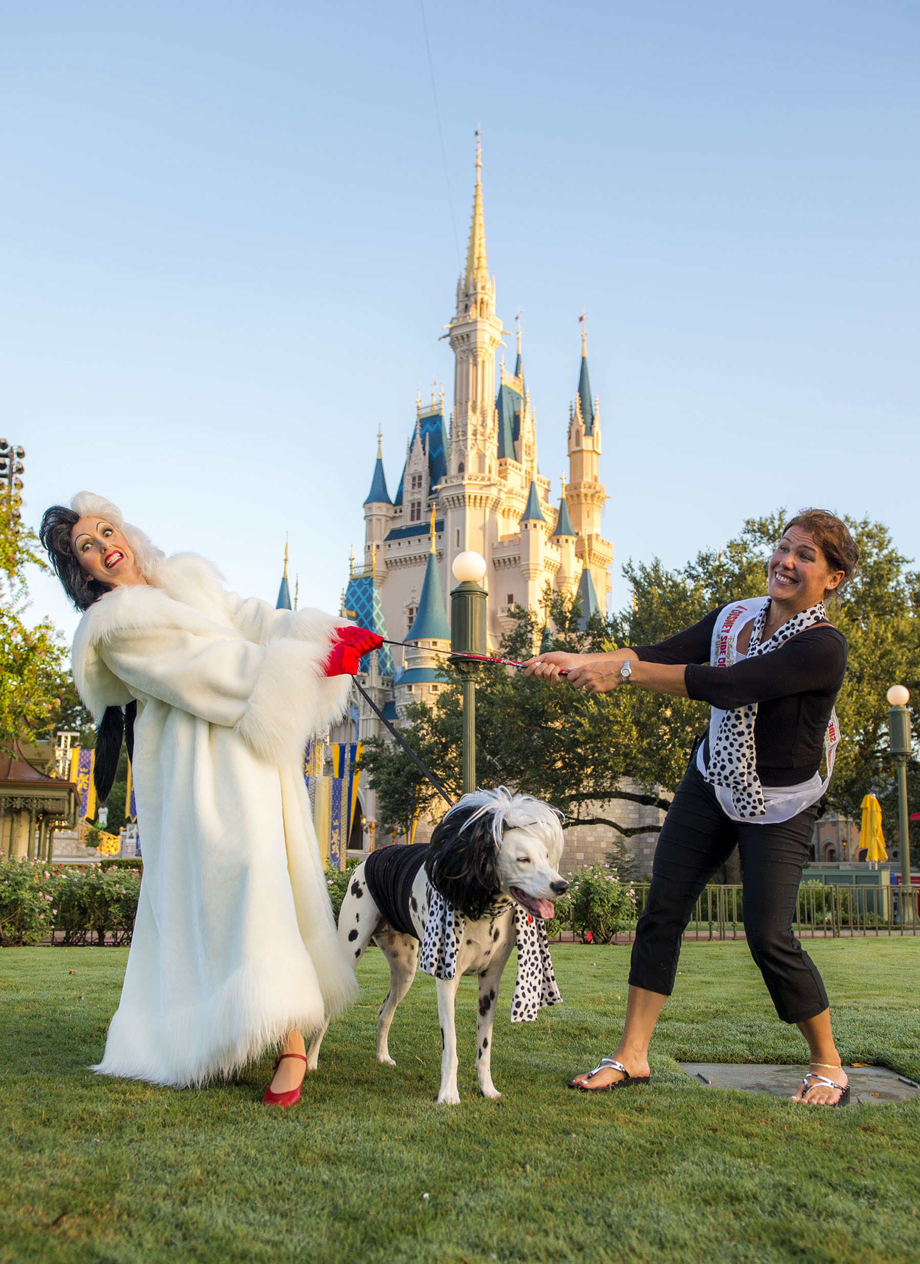 Disney invited 101 dogs inside the magic kingdom this weekend cruella dog in magic kingdom publicscrutiny Image collections