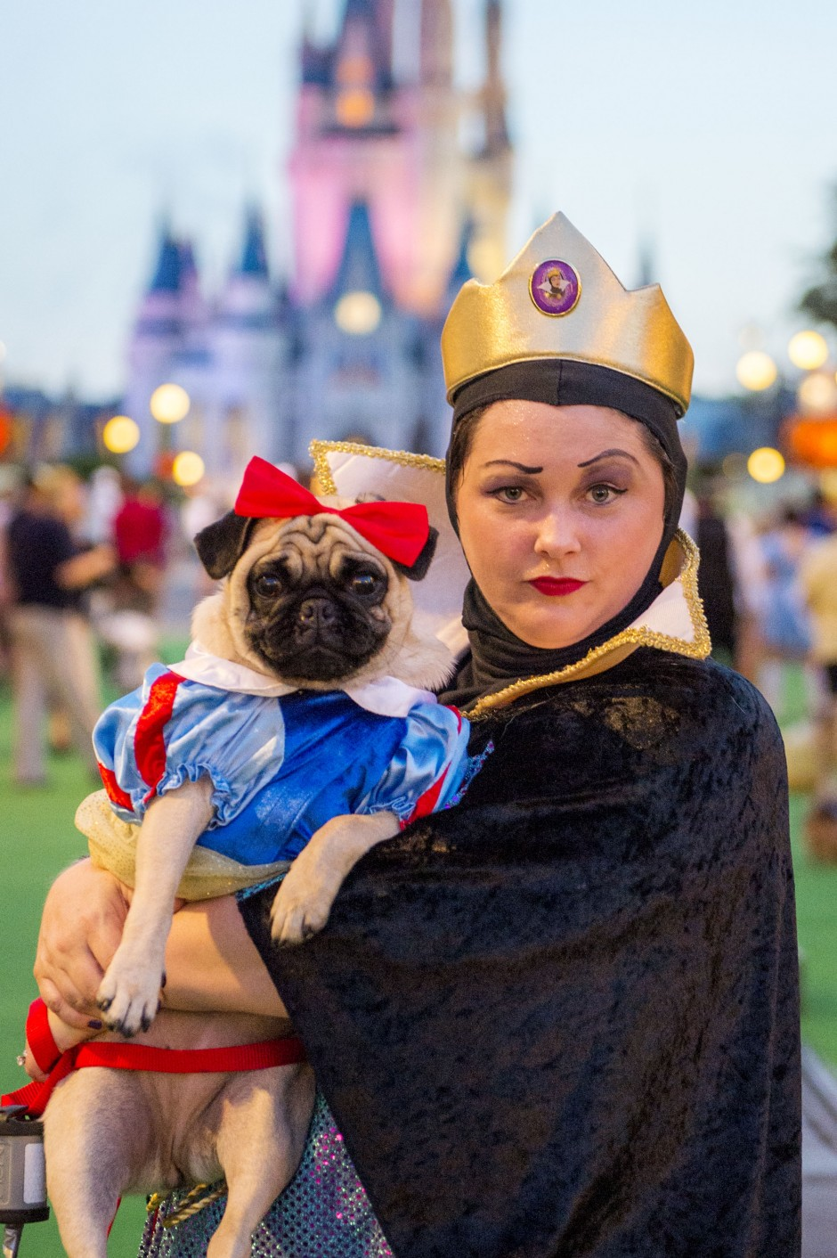 Disney Invited 101 Dogs Inside the Magic Kingdom This Weekend