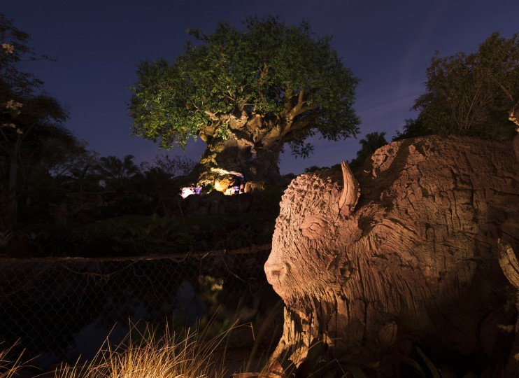 Construction Walls Down at Disney's Animal Kingdom Reveal New Animals on Tree of Life