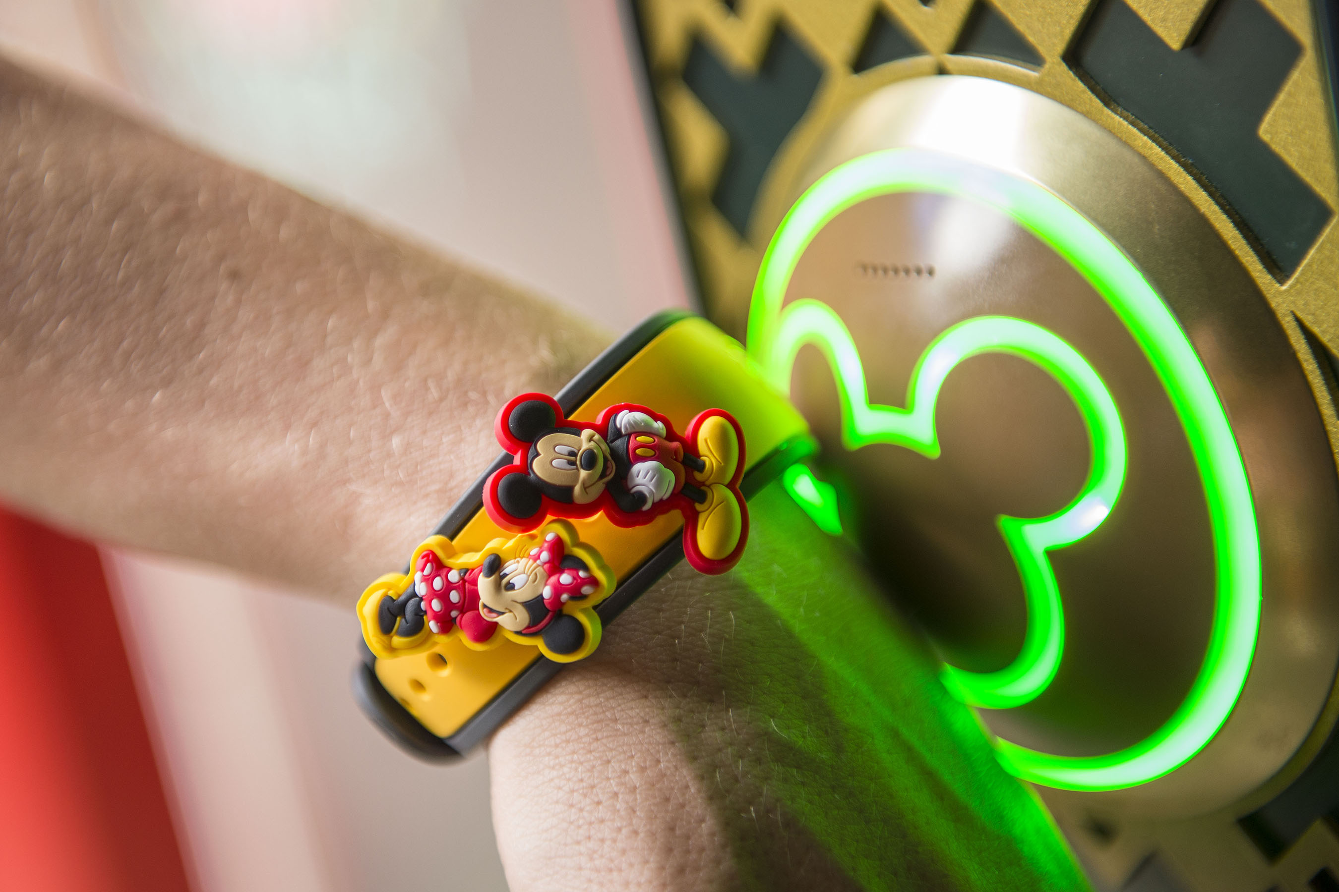 how to download photos from disney photopass