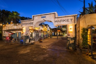 Harmabe Market at Disney's Animal Kingdom
