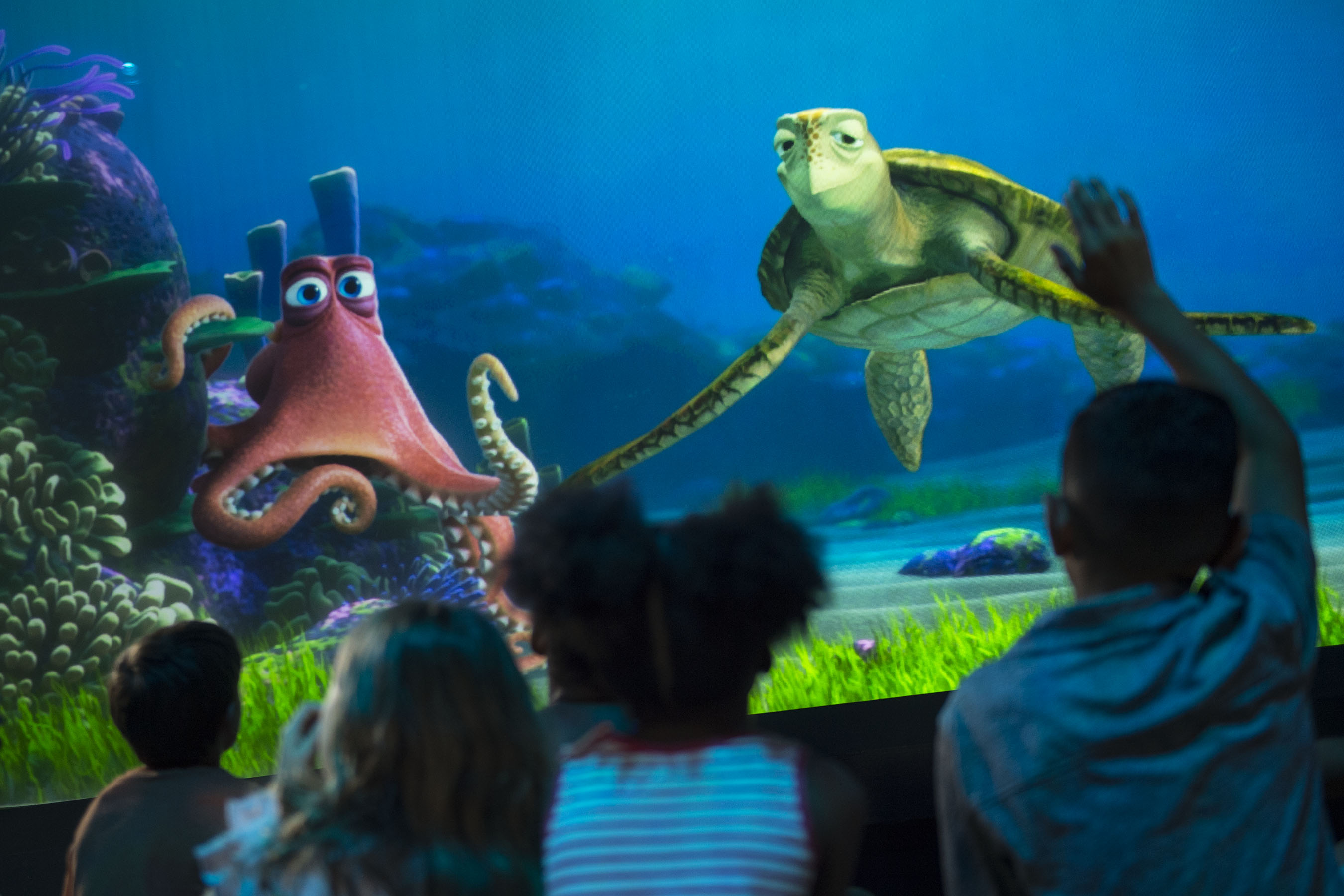 Where To Meet Finding Dory Characters At Disney Disney