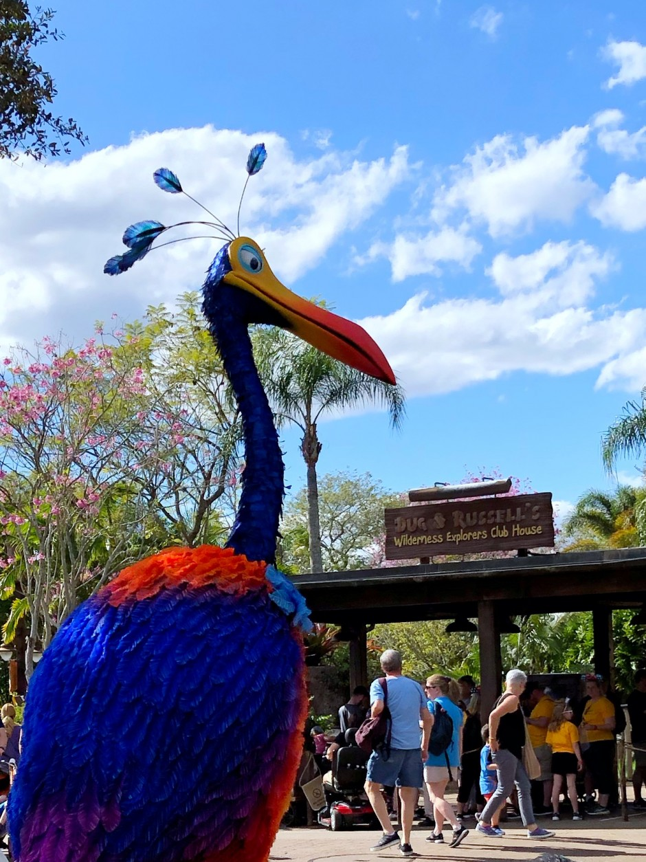 Where to Meet Kevin the Bird from UP at Walt Disney World