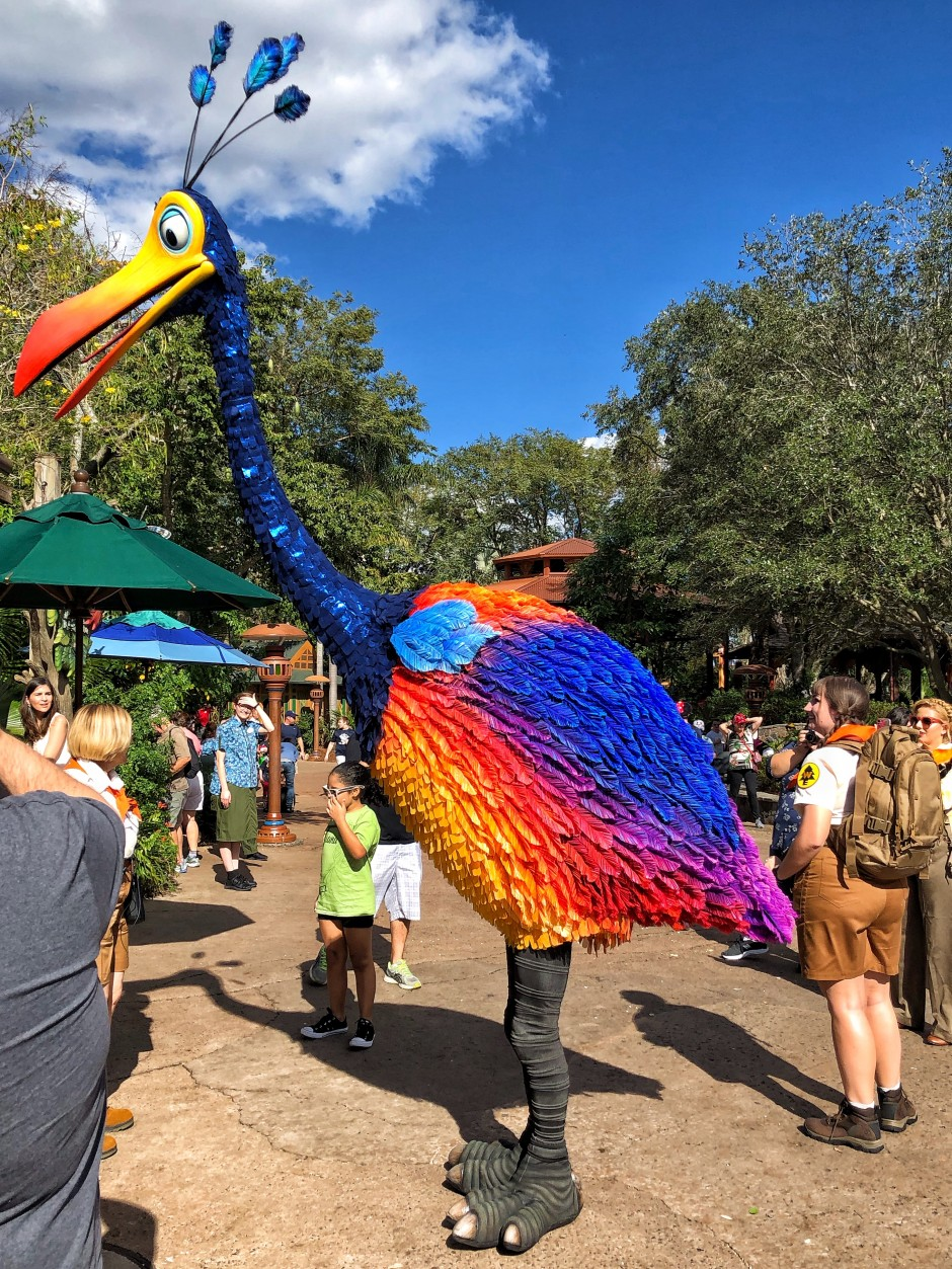 Where to Meet Kevin the Bird from UP at Walt Disney World ...