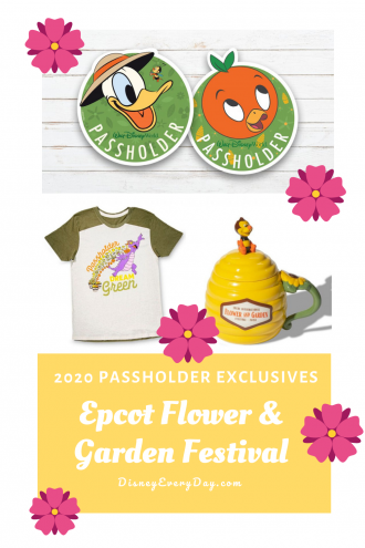 2020 Annual Passholder Magnets for Epcot Flower and Garden Festival